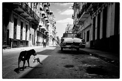 Havana, Cuba 2013 photo by Steffell