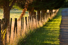 Fine farm fence photo by cheezepleaze