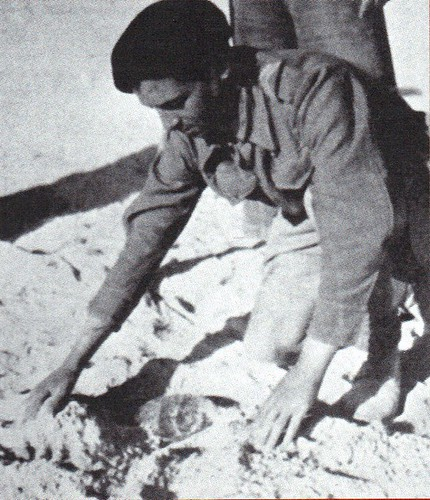 Génie - Bir Hakeim 1942 - sapeurs mineurs