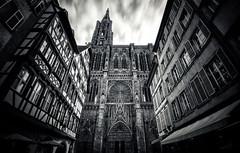 Cathédrale Notre-Dame de Strasbourg photo by Philipp Klinger Photography