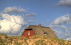 Hvidbjerg Dunes Cottage photo by blavandmaster