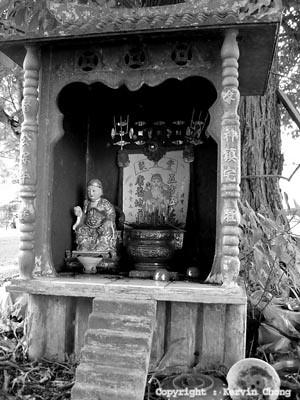 Tree-altar
