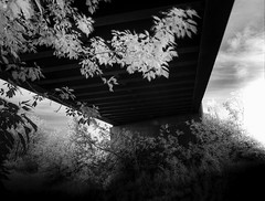 HDR IR under the bridge