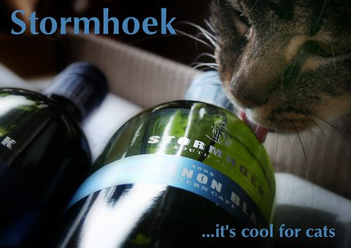 The Cat's Stormhoek Ad