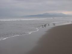 La Serena beach