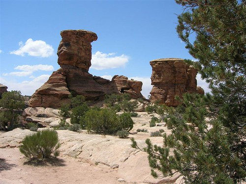 Canyon Lands - 1