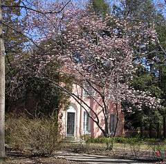 4/9/06: Springfield House