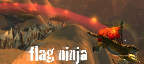 Flag Ninja