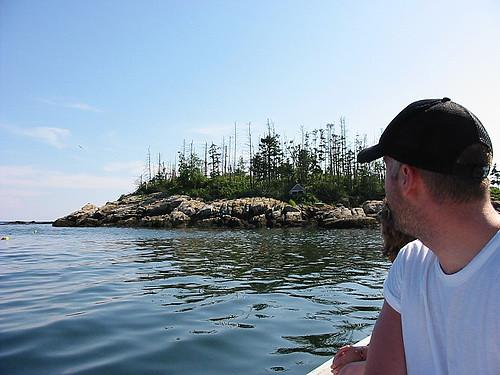 Hippie Island