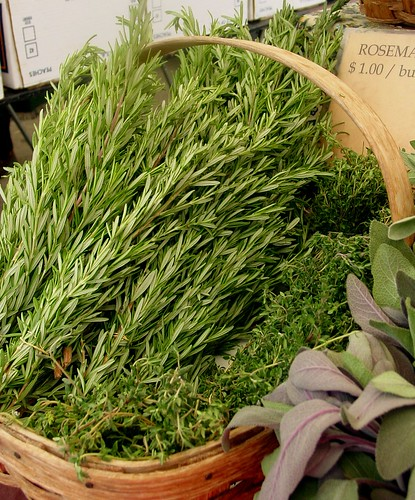 Fresh Herbs Rosemary