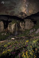 Wildflower Nightscape In Porphyry Basin photo by Mike Berenson - Colorado Captures