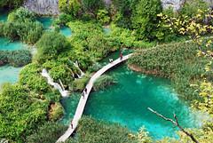 Croatia - Plitvice - Hvratska - Plitvice Lakes National Park - 11 photo by F2eliminator Travel Photography