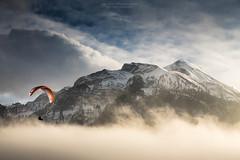 Hello ! Jungfrau photo by notjustnut