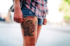 The Girl with the Owl Tattoo photo by My . December