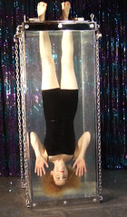 Escape Artist Dayle Krall and her new Water Torture Cell! photo by Dayle Krall:Most Accomplished Female Escape Artist