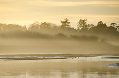 Winter mist photo by Belhaven2011