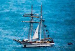 Sailing Boat photo by bigbirdma