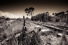 Dead line photo by Stavros A.