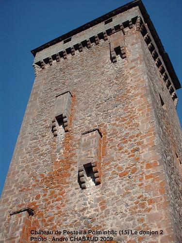 Château de Pesteil à Polminhac (15) Le donjon 2