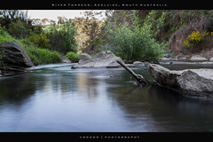 Number 277 of 365 - Upper Gorge - River Torrens, Adelaide, South Australia photo by MarkFromAdelaide