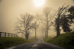 morning on apple grove road... (explored) photo by w3inc / Bill
