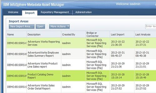 IBM Metadata Asset Manager import page