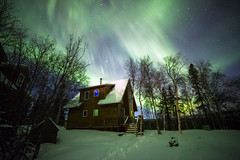 Northern Lights on Christmas Morning photo by Critter Seeker