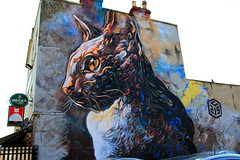 2013 Upfest Bristol - Graffiti Art by Graffiti Artist: C215    {Explore - 29/07/2013 - Highest Position 108} photo by Andy_Hartley