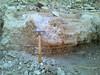 16366207412_53b6599f78_t