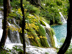 Seeking Science around Plitvice Lakes photo by altamons