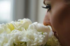 Wedding Preview photo by FrankJRodrigo