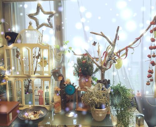 2013年 聖誕佈置