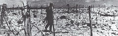 Bir Hakeim 1942 - Marais de mines