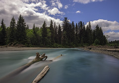 Taking A Plunge Into Hoh River [Explored] photo by Phoenix Rising Photography