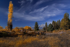 Fall In Teton National Park photo by Jerry T Patterson
