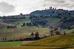 San Gimignano photo by benshell