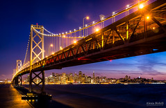 Under the Bay photo by Alexis Birkill Photography