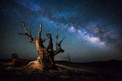 Under and Ancient Sky photo by DanB.