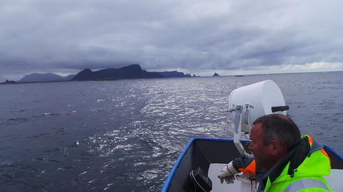 2013-0721 822 Andenes terugreis walvisafari