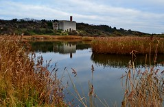 Aberthaw Lime Works photo by Paula J James