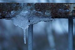 Frozen in time photo by miroslav.hajduk