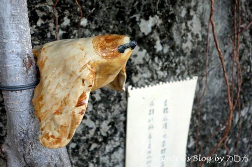 46_台南321巷藝術聚落