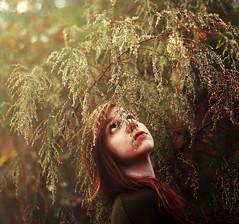 [explored] photo by Mary Jo.