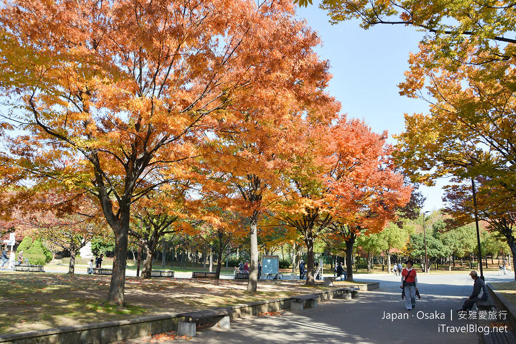 《大阪景点推荐》花博纪念公园:日本大阪秋色缤纷的花博纪念公园鹤见緑地。