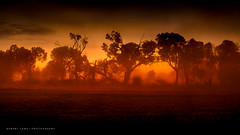 Dust storm, South Australia photo by Robert Lang Photography