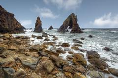 Prehistoric Island photo by Gareth Wray Photography -Thanks = 6.5 Million Hits