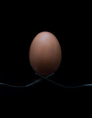 Egg on forks photo by Fisher473