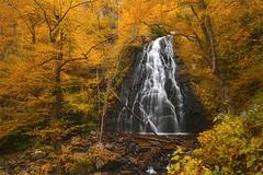 Crabtree Falls - Blue Ridge Parkway, North Carolina photo by Will Shieh
