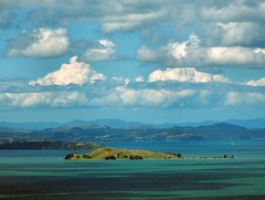 Sky Tower View. Browns Island - Motukorea, Hauraki Gulf, Auckland, New Zealand photo by Rana Pipiens