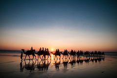 Ships of the Cable Beach photo by Pat Charles